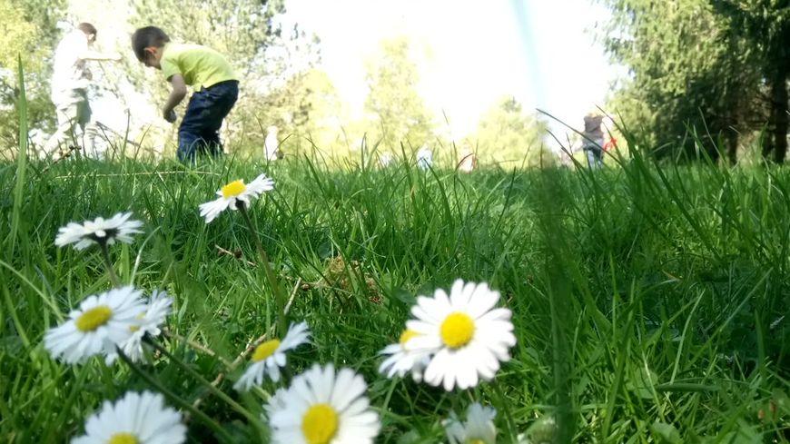 Une chasse aux œufs à Vandoeuvre dans le parc Richard-Pouille.