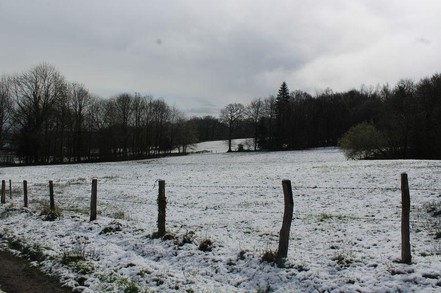 Dans le Bocage virois, des épisodes de neige, de pluie et de grêle se sont succédé