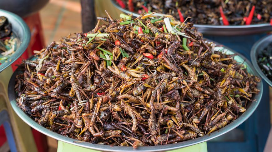 Consommer des insectes