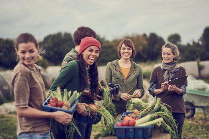 Retour à la terre : le bonheur est dans la ferme ?