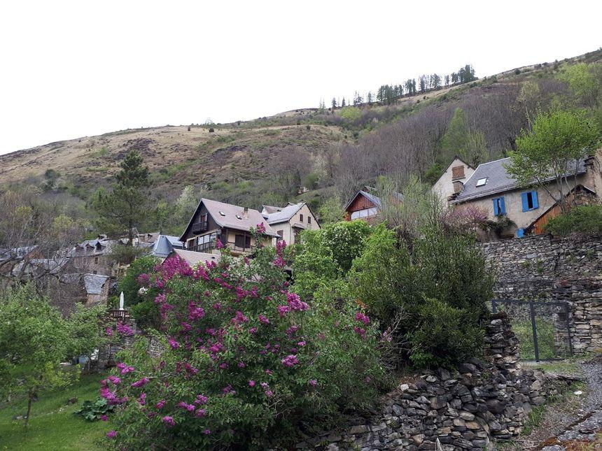 Les abords du village de Cazaril-Laspènes sont bien débrousaillés