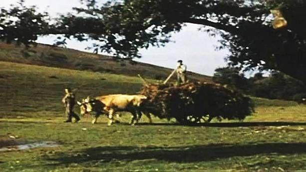 Gure Sor Lekua, le premier documentaire en Basque, il y a 65 ans
