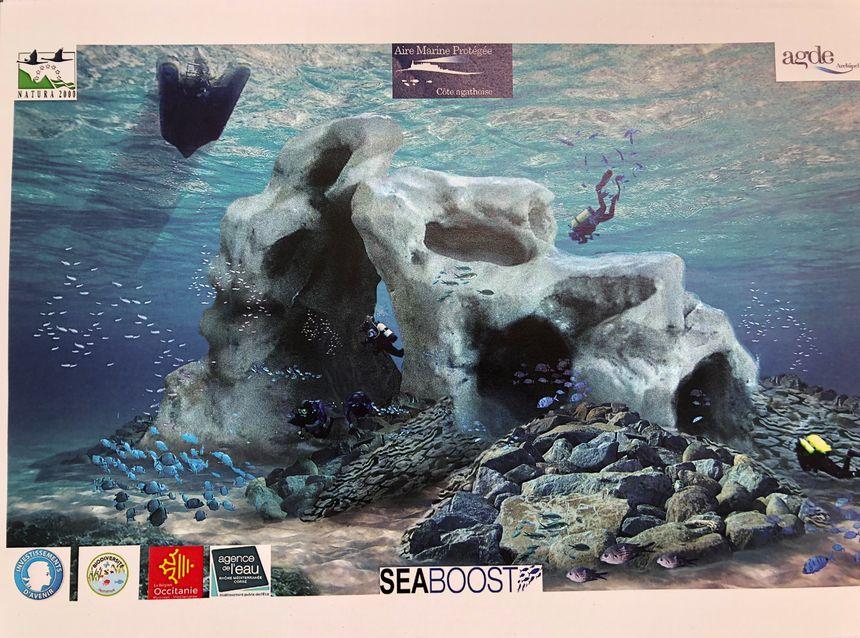 Un récif artificiel va être créé pour les plongeurs