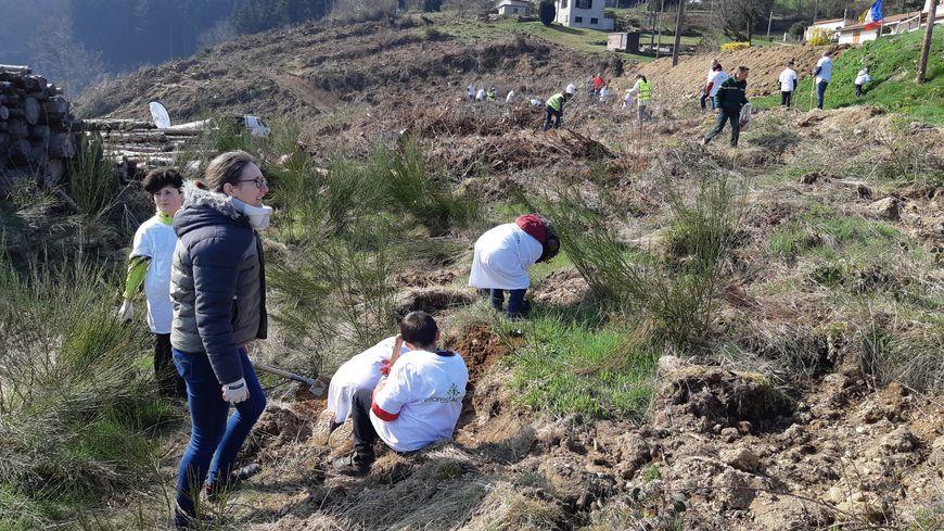 Une cinquantaine de personnes dont de nombreux enfants ont planté les arbres.