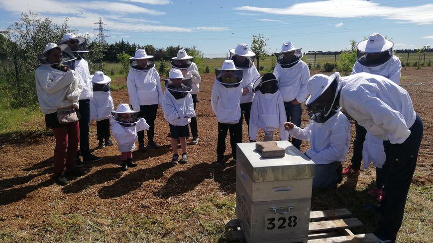 Dans le Gard, 52 producteurs ouvrent leurs portes pour Ferme en ferme. Ici, un petit groupe découvre les ruches de Julien Belin