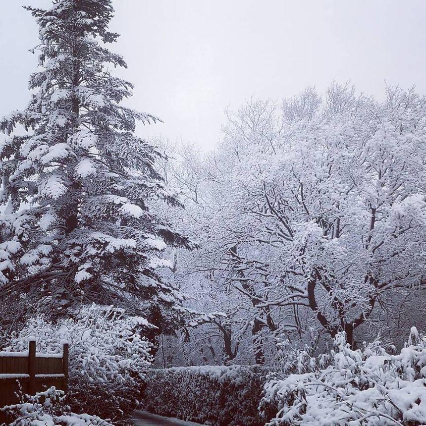 la zoo de Jurques sous la neige un 3 avril