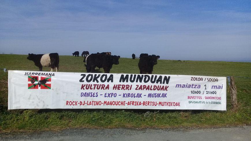Zokoa Munduan