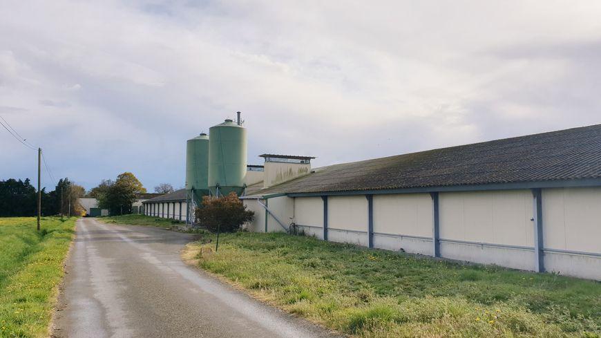 Cette exploitation, créée en 1997 à Cossé-le-Vivien, élevait également des bovins.