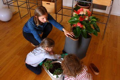 Les enfants nourrissent les vers du compartiment compost
