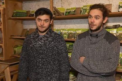 Les jumeaux Grelin ont réussi à reprendre l'entreprise familiale, et sont parmi les derniers grainetiers de France