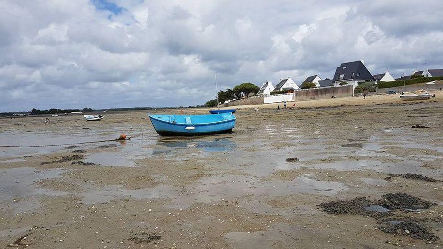 Marée basse sur l'estran de l'Ile Tudy, zone de prédilection des pêcheurs à pied