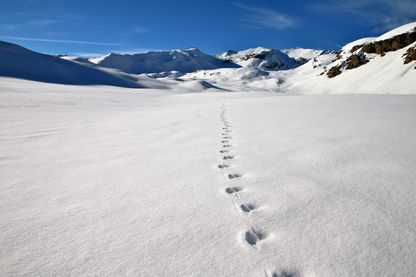 Incroyable ! Les Romains ont laissé leur empreinte jusque dans les glaciers des Alpes !