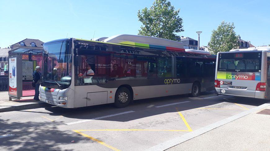Photo d'illustration des bus Optymo.