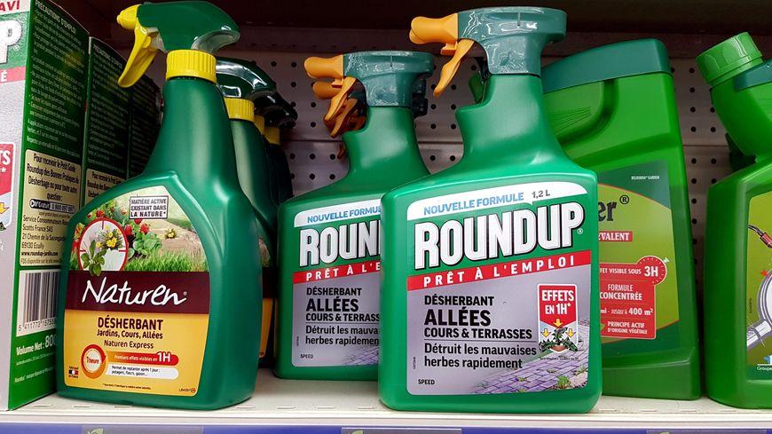 Le glyphosate est notamment présent dans le produit désherbant Roundup