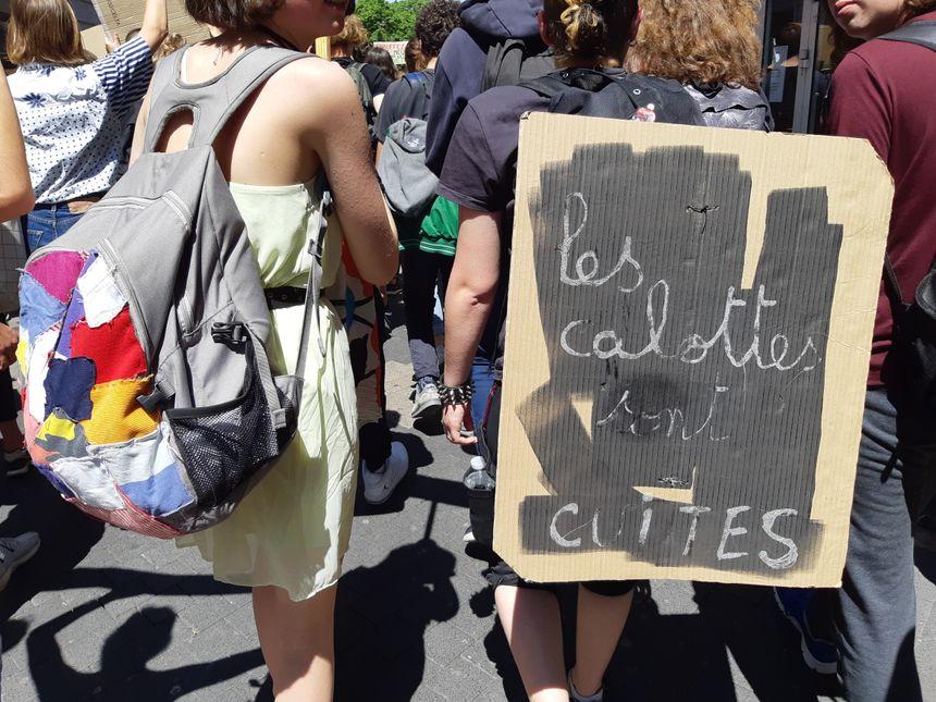Les pancartes des jeunes pour le climat rivalisent d'originalité
