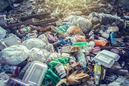 Interroger notre rapport aux déchets