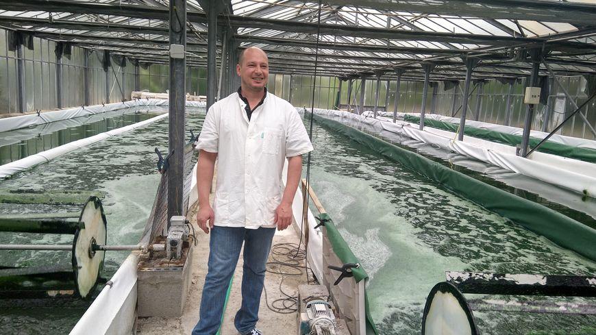 Benjamin devant ses bassins de production de spiruline