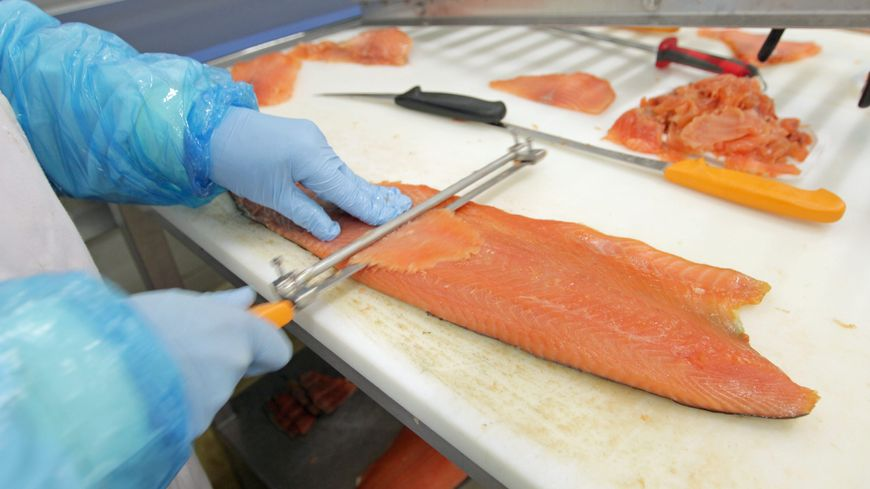 La nouvelle usine sera spécialisée dans la production du saumon fumé d'excellence.