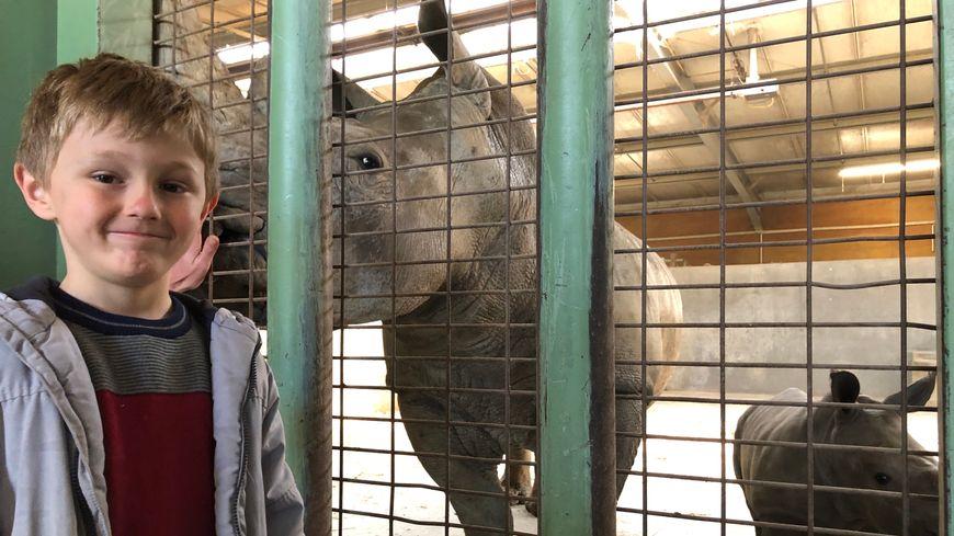 Basile, un jeune visiteur de 5 ans avait demandé à ce que le rhinocéros s'appelle comme lui