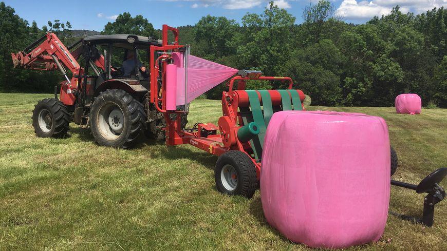 Du rose pour lutter contre le cancer du sein