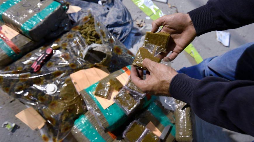 Saisie de cannabis. Photo d'illustration