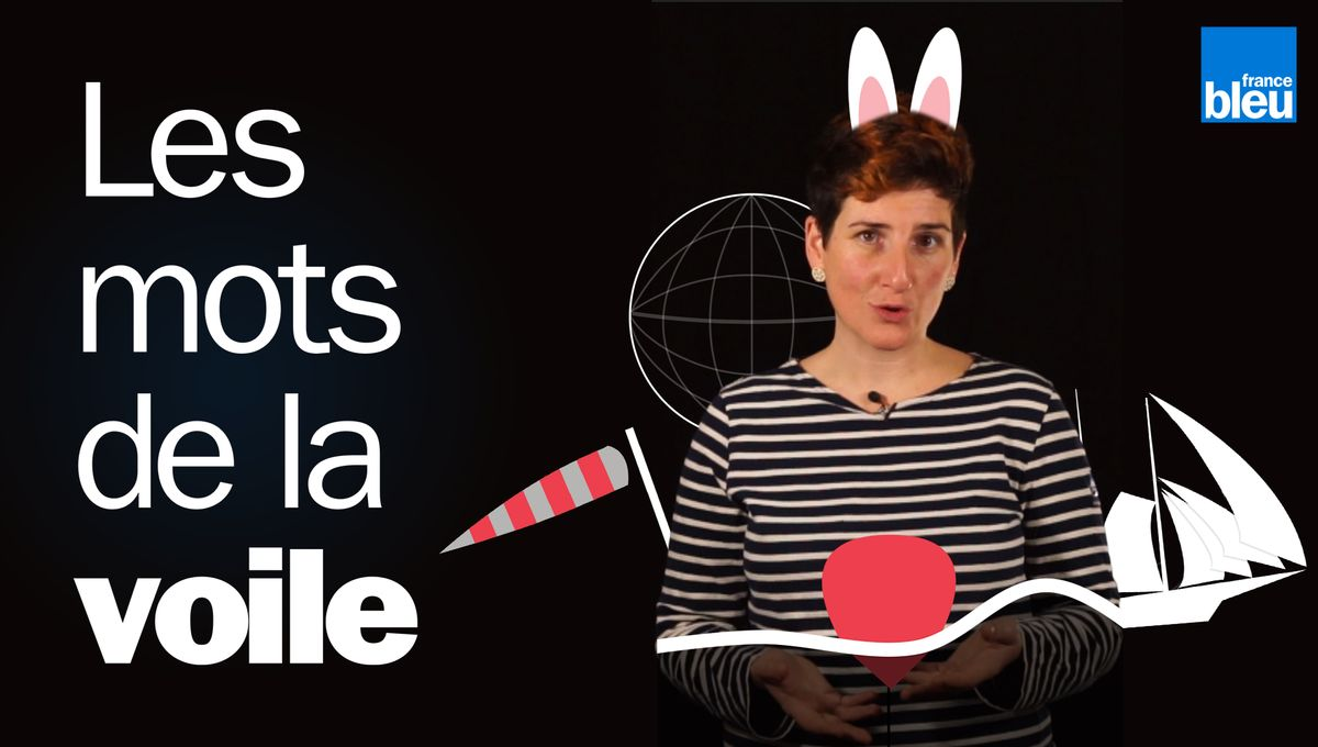 Armada 2019 à Rouen : les mots de la voile expliqués en dix vidéos