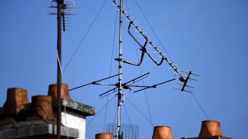 2,3 millions de Nordistes regardent la TNT via leur antenne-râteau