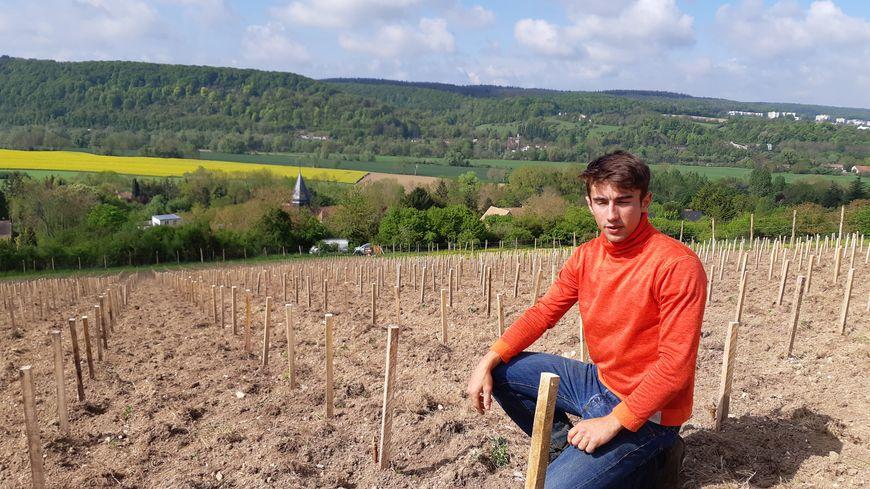 Sur la parcelles Les Vignettes, plein sud, les premiers pieds de vigne ont été plantés mi-mars 2019