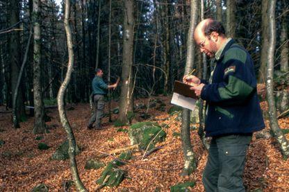 Marquage des arbres à couper par des gardes forestiers de l'ONF dans la forêt domaniale du ballon de Servance dans les Vosges