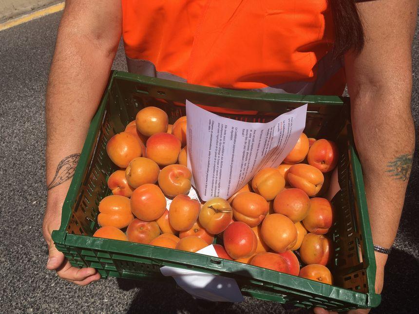 Deux cagettes d'abricots ont été prélevées et données à la préfecture des Pyrénées-Orientales