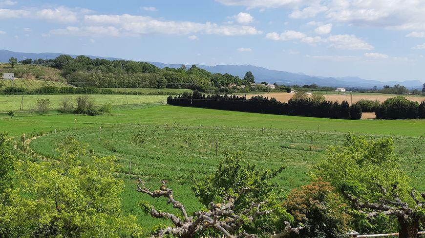 Le verger en cercles de l'INRA à Saint-Marcel-lès-Valence (Drôme)