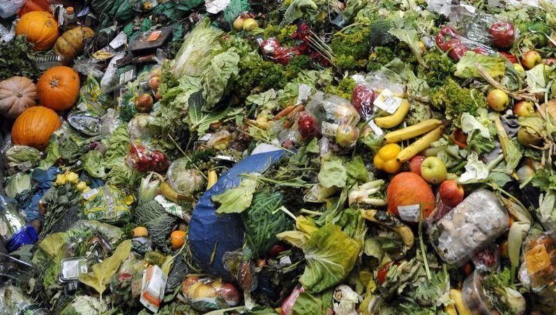 Dans le Nord-Mayenne, le patron d'un supermarché se lance dans le combat contre le gaspillage alimentaire