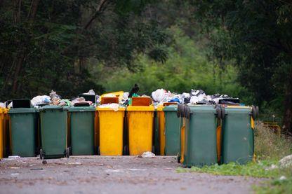 Des ordures ménagères (photo d'illustration)