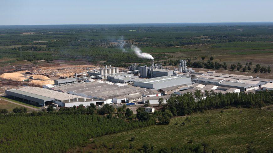 L'usine EGGER de Rion-des-Landes