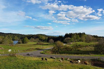 Paysage de l'Artens, en Auvergne