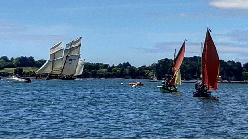A la rencontre des flottilles dans le Golfe du Morbihan