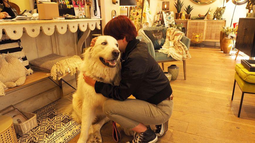 Amalia et son chien Artax sortis de la rue grâce au soutien d'une commerçante et à de nombreux coups de pouce