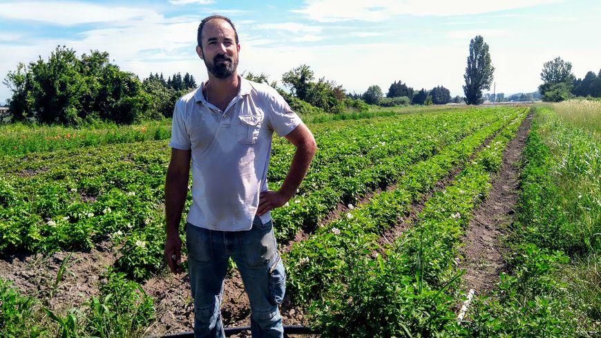 Sébastien Garcia devant ses champs de pommes de terre bio