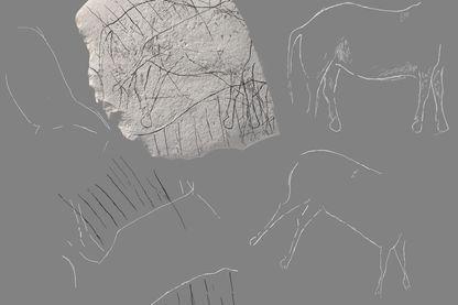 La derniere oeuvre figurative du paléolithique