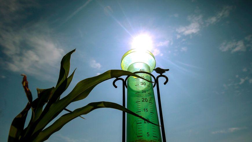 La sécheresse se profile en Haute-Vienne (image d'illustration)