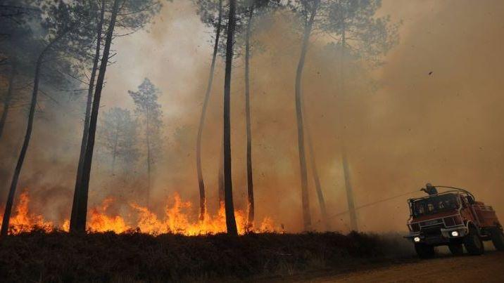 Feu de forêt dans les Landes