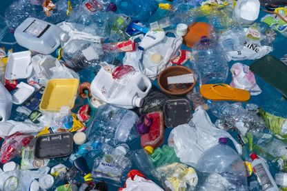 Légende : Algues vertes, plastiques : l'océan a le mal de mer ?