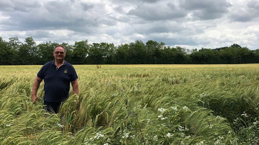 Paul Campas, agriculteur à Arquenay (Mayenne), plante des haies bocagères depuis plus de 30 ans.