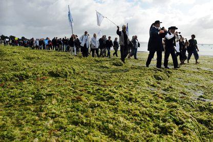 Une centaine de personnes manifestent à l'appel de la coordination anti-marées vertes de Bretagne, le 18 septembre 2011 sur la plage de Cap Coz à Fouesnant