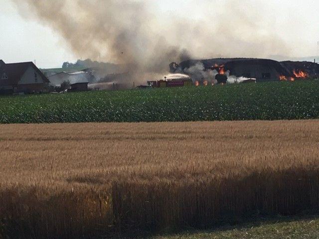 La grange d'environ 2 à 3000 m2 et le magasin sont partis en fumée.