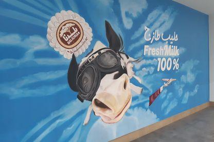 Le blocus imposé au Qatar par l'Arabie saoudite l'a privé de produits laitiers. Qu'à cela ne tienne, le petit émirat a développé ses fermes de bovins. Et atteint l'autosuffisance.