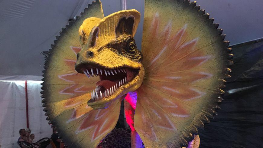 Quinze modèles de dinosaures sont à découvrir à Mayenne ce dimanche.