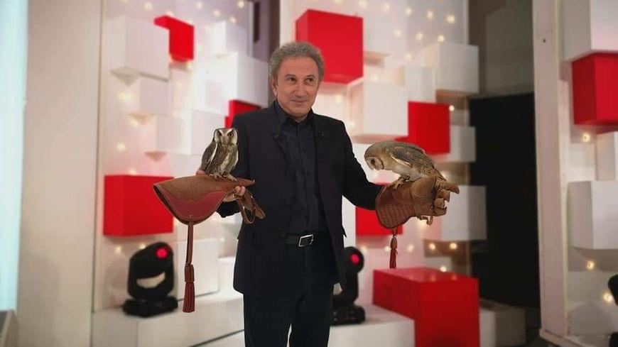 """Côte-d'Or : """"Les Chouettes du Coeur"""" sur le canapé rouge ..."""