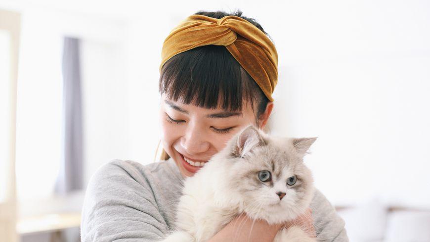 Le chat, un bon ami pour l'Homme