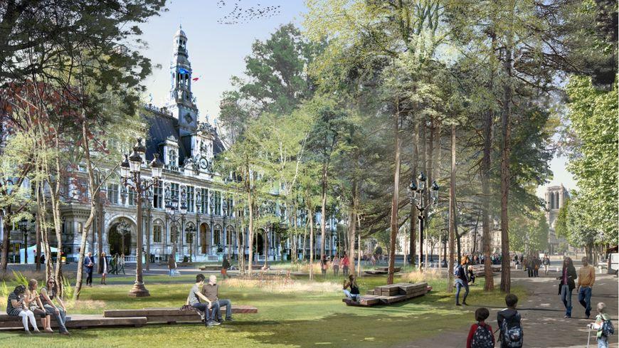 Une forêt sur le parvis de l'Hôtel de ville